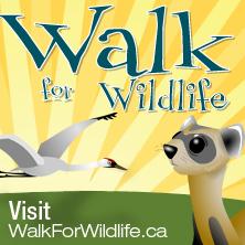 walk for wildlife